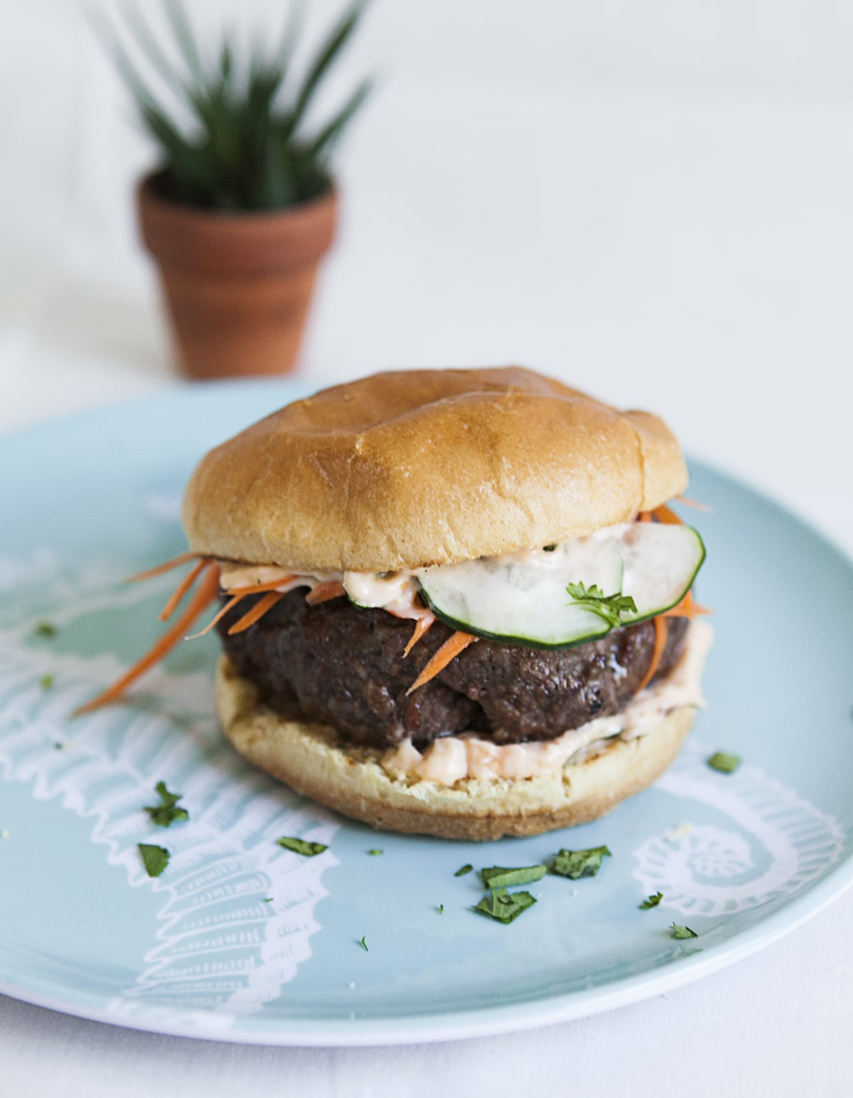 Banh Mi Burgers - Jessica Brigham Blog - Magazine Ready For Life For Less